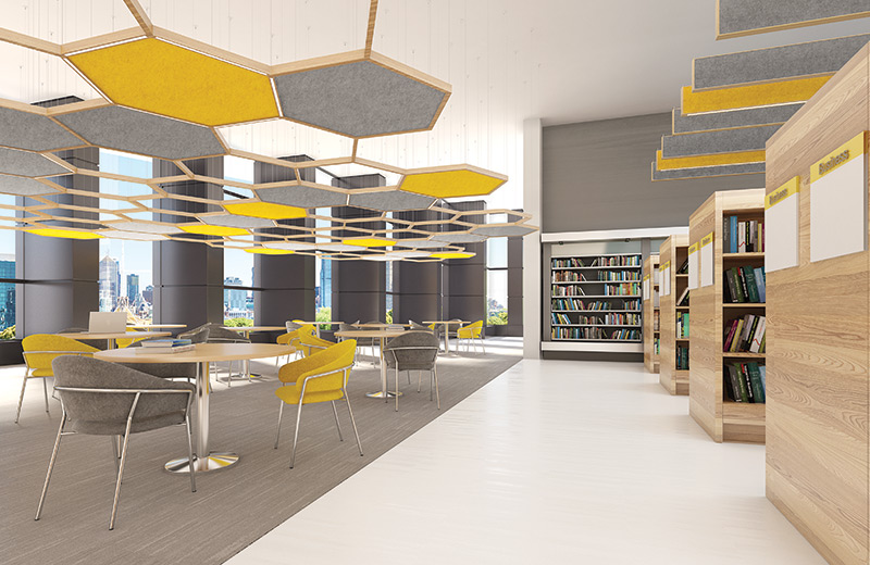 Softzone Render Pendant Hexagon Vertical AP Library CO