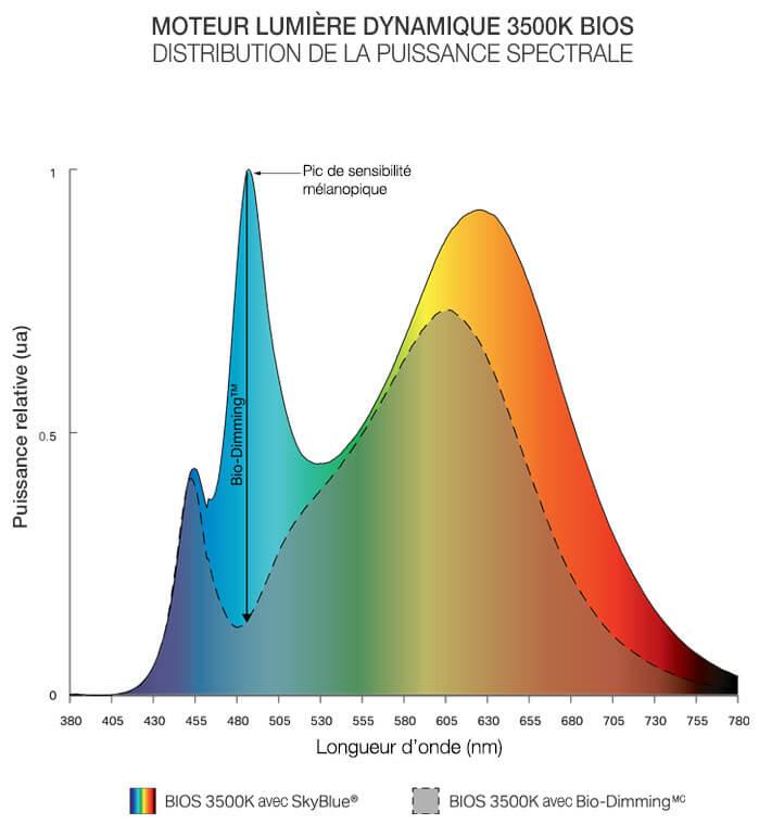 Dynamic Spectrum Fr