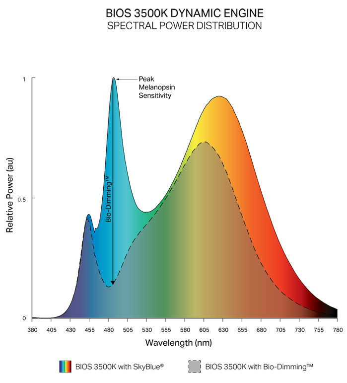 Dynamic Spectrum